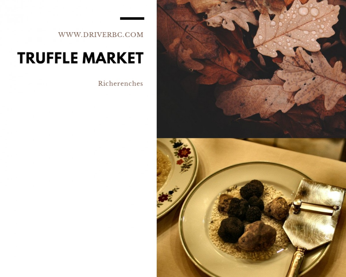 Half day trip to Richerenches truffle market