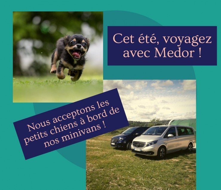 Private driver dog friendly in Provence