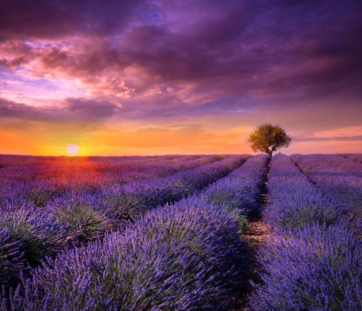 Sunset Tour in Provence