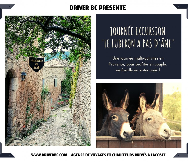 A walk with a donkey in Provence